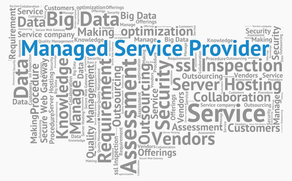 managed_service_provider1